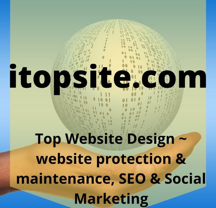 logo image with yellow background for Top Website Sesign SEO Social Media marketing and Website Protection Services